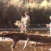 dh_fishing3
